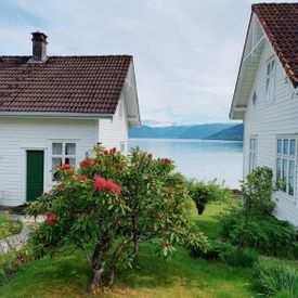 Houses in Balestrand